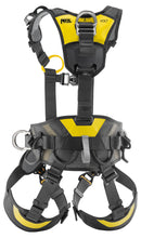 Load image into Gallery viewer, Black harness with yellow highlights rear view