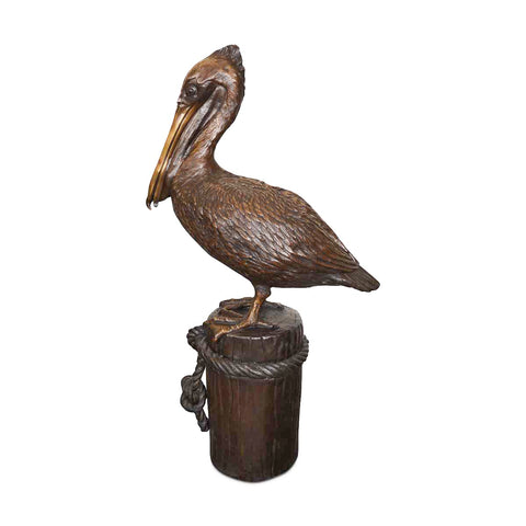 Pelican Standing on Piling