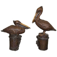 Pair of Pelicans Sitting and Standing on Piling
