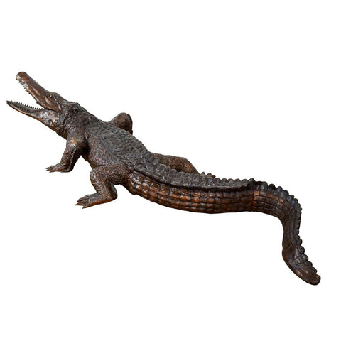 Large and Long Alligator