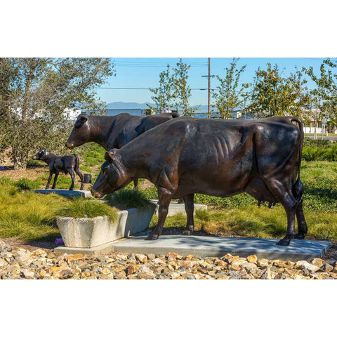 Custom Bronze Holstein Cow Statues Set