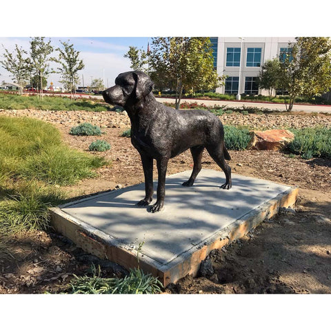 Custom Bronze Labrador Retriever (Lab) Dog Statue