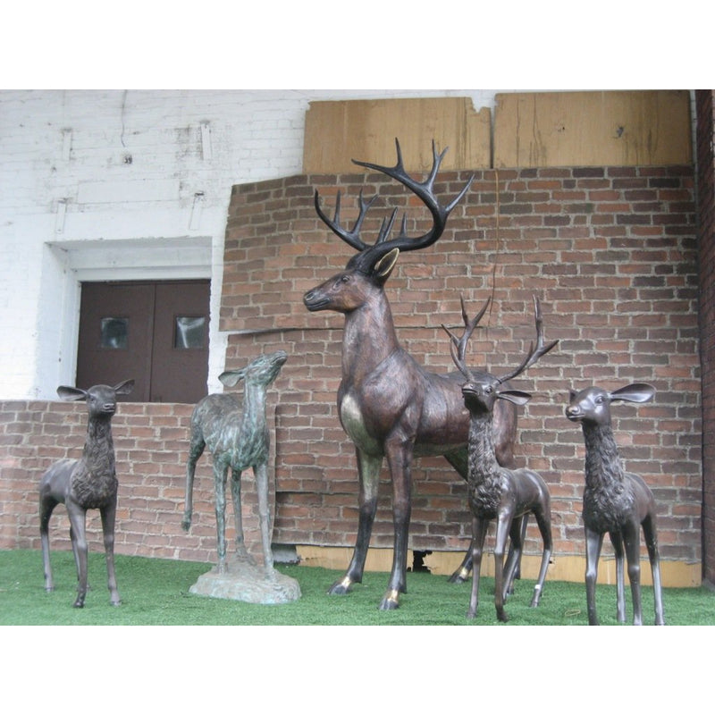 Bronze White-Tailed Deer Statue