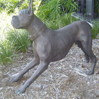 Bronze Statue of Boxer Dog