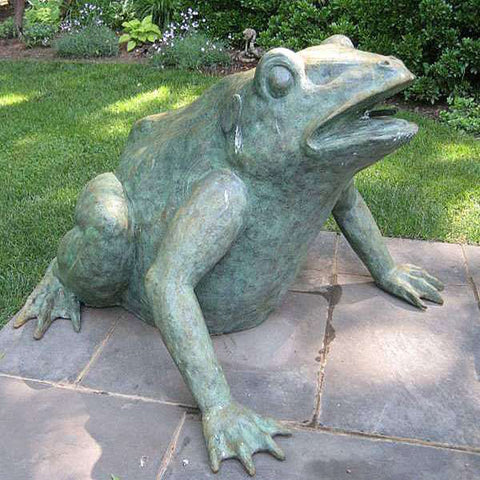 Jungle Frog - Extra Large