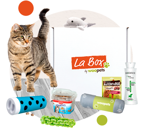 La Box Chat - 6 produits surprises