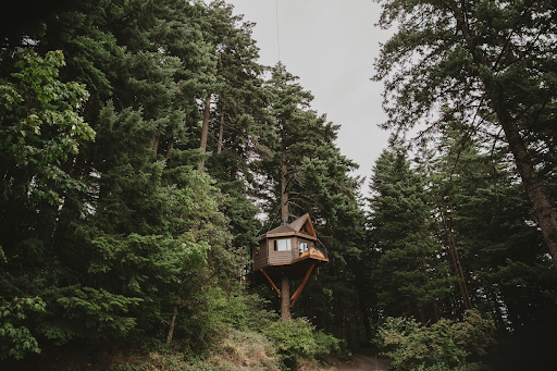 East Meets Dress Nature Inspired Outdoors Taiwanese American Wedding with Treehouse
