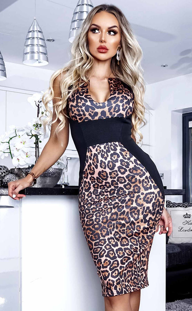 Jane Illusion Leopard Panel Dress