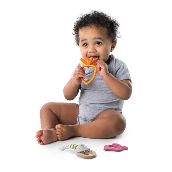 Bright Starts BS11070 (35/49) Teether Bunny Bites Teething Set