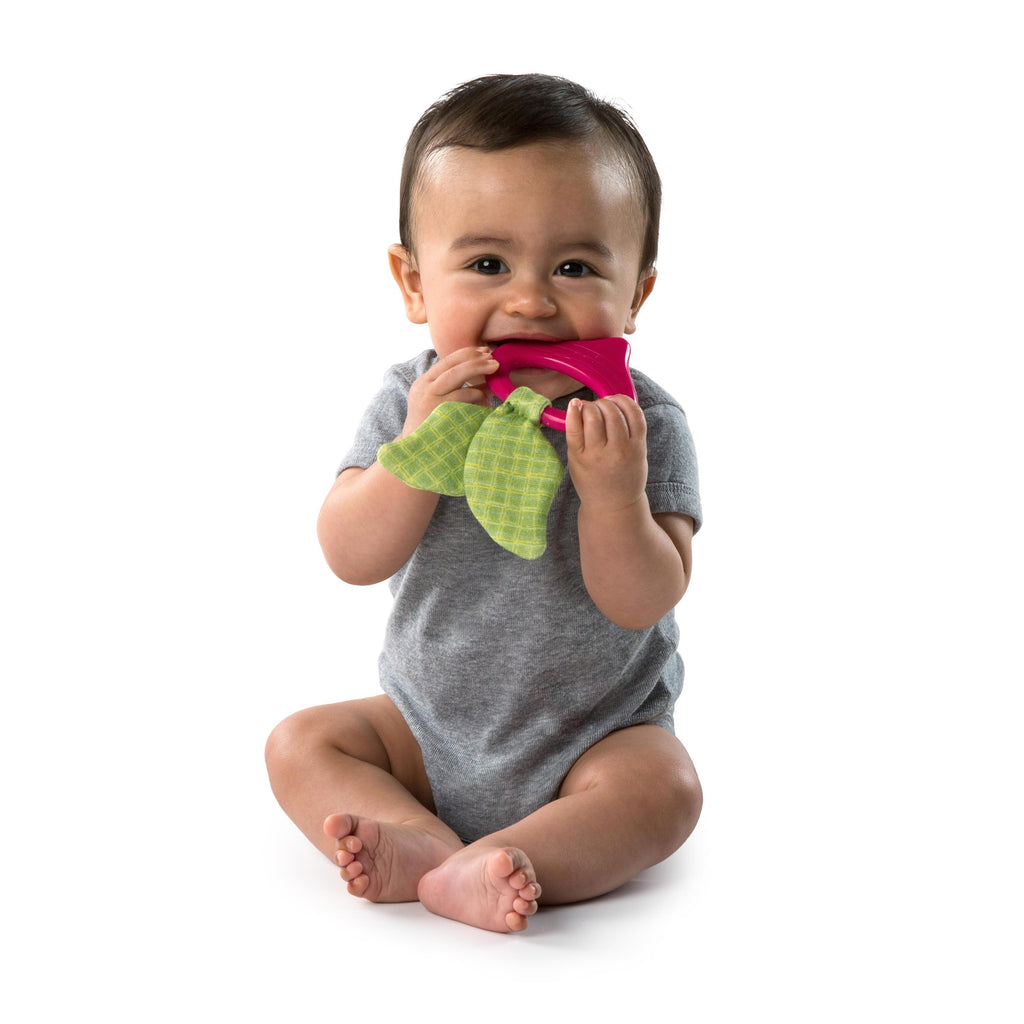 Bright Starts BS11143 (0) Teether Garden Chews