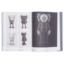 Load image into Gallery viewer, KAWS