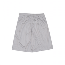 Load image into Gallery viewer, Coordinates Mesh Shorts, Grey