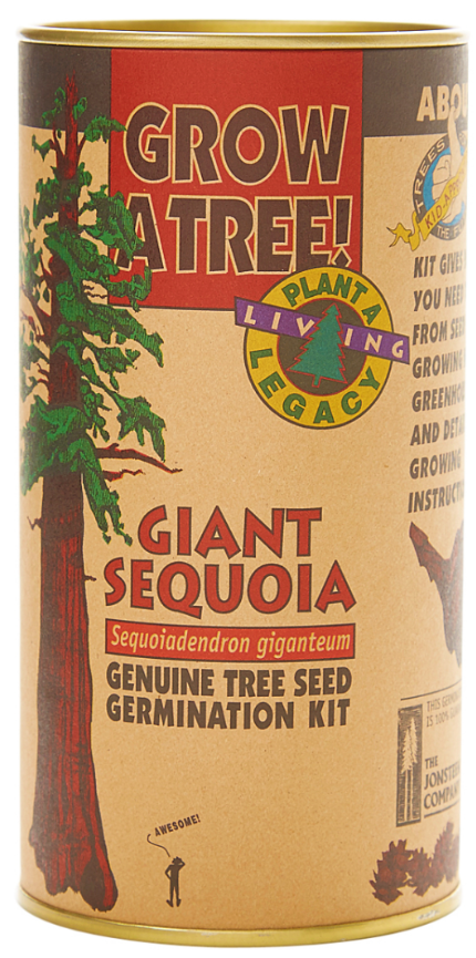 Giant Sequoia Seed Grow Kit (Qty. 6)