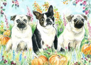 Pugs in the Pumpkins (Qty.6)