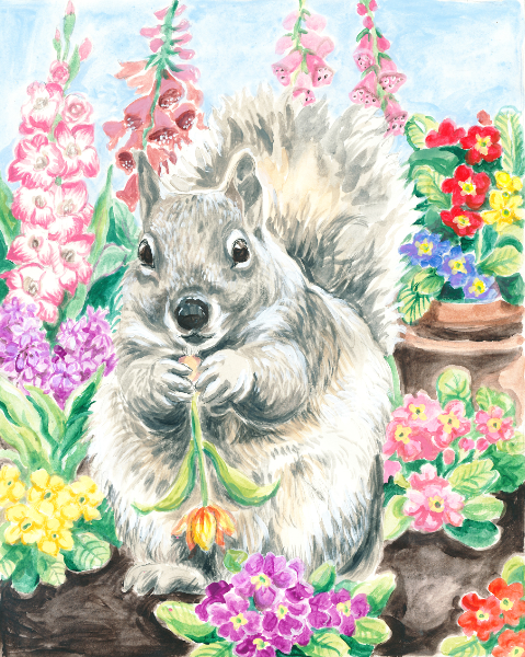 Squirrel About to Eat the Garden (Qty. 6)
