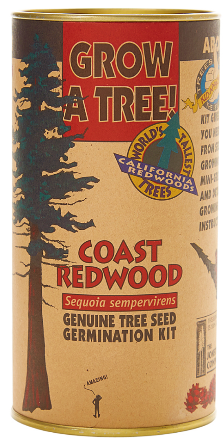 Coast Redwood Seed Grow Kit (Qty. 6)