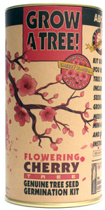 Flowering Cherry Seed Grow Kit (Qty. 6)