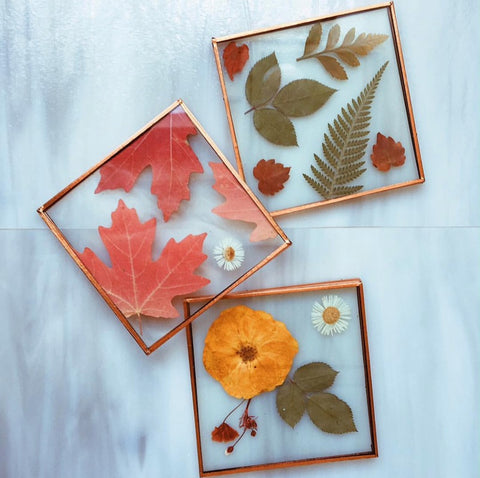 Fall Leaf Glass Coaster
