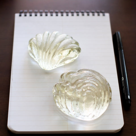 Glass Shell Paperweight