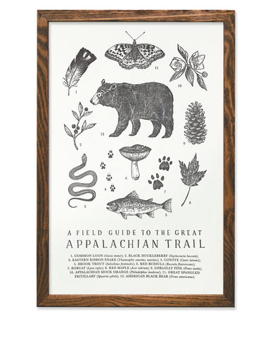 Field Guide to The Appalachian Trail Print