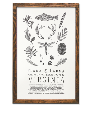 Field Guide to Virginia Print