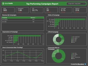 Top Performing Campaigns Report