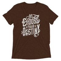 Inspirational-Choose Your Destiny T-Shirt-Brown Triblend-XS-StolenCompany