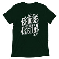 Inspirational-Choose Your Destiny T-Shirt-Emerald Triblend-XS-StolenCompany
