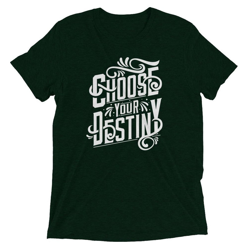 products/choose-your-destiny-t-shirt-emerald-triblend-xs-2.jpg