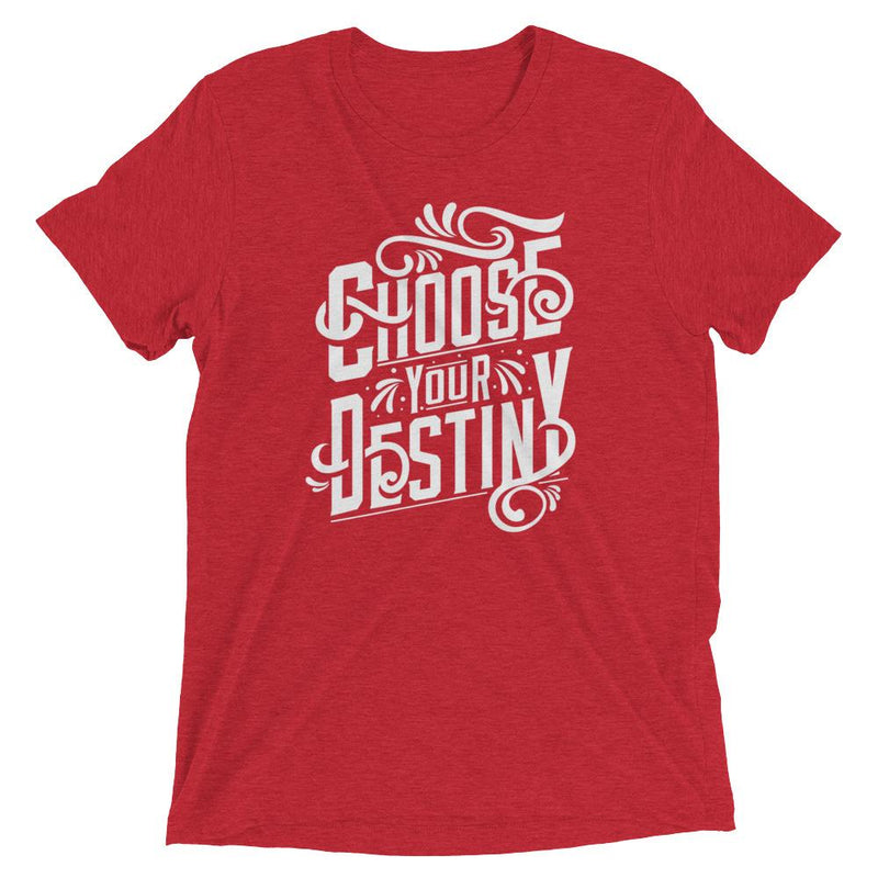 products/choose-your-destiny-t-shirt-red-triblend-xs-9.jpg