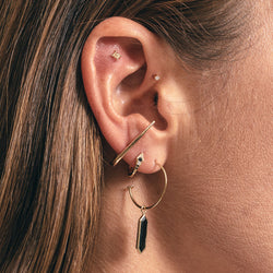 Skinny Point Ear Story