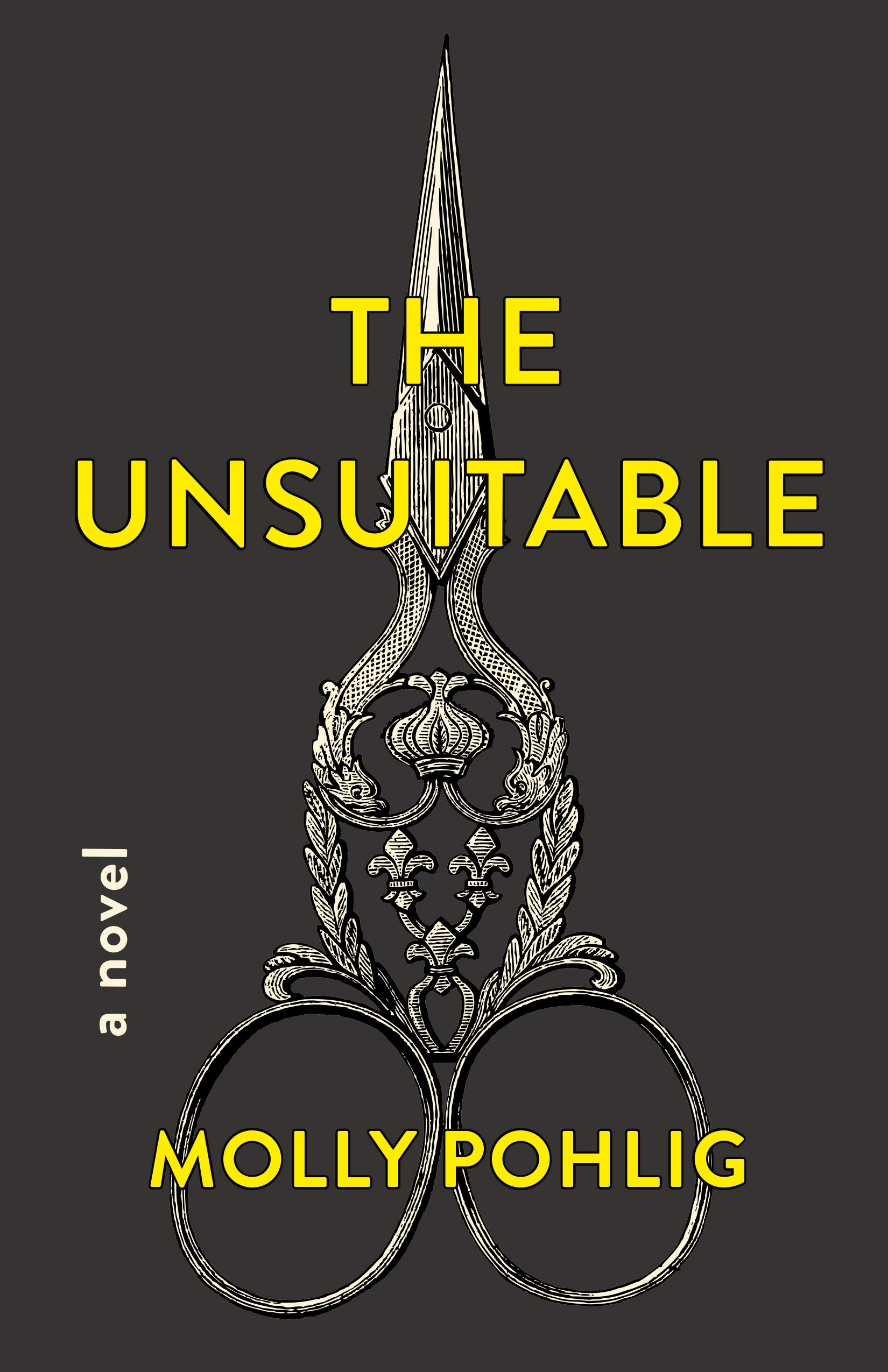 Side by Side Review: THE UNSUITABLE by Molly Pohlig
