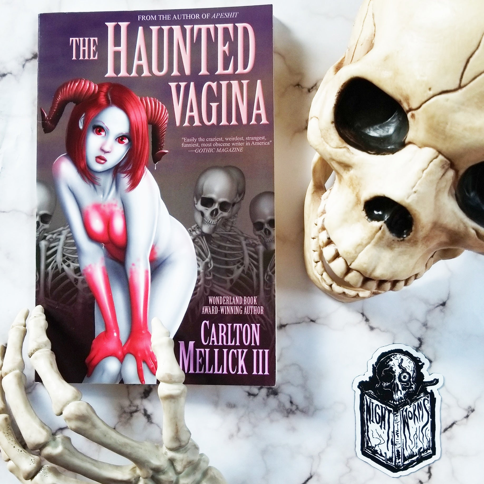 Alex Pearson's Offbeat Horror Review: The Haunted Vagina by Carlton Mellick III