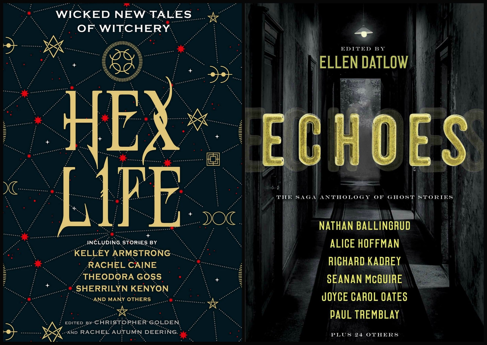 Anthology Smackdown! ECHOES vs. HEX LIFE by Beth Griffith