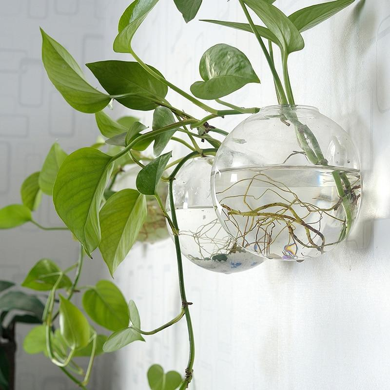 Wall Hanging Hydro Vases