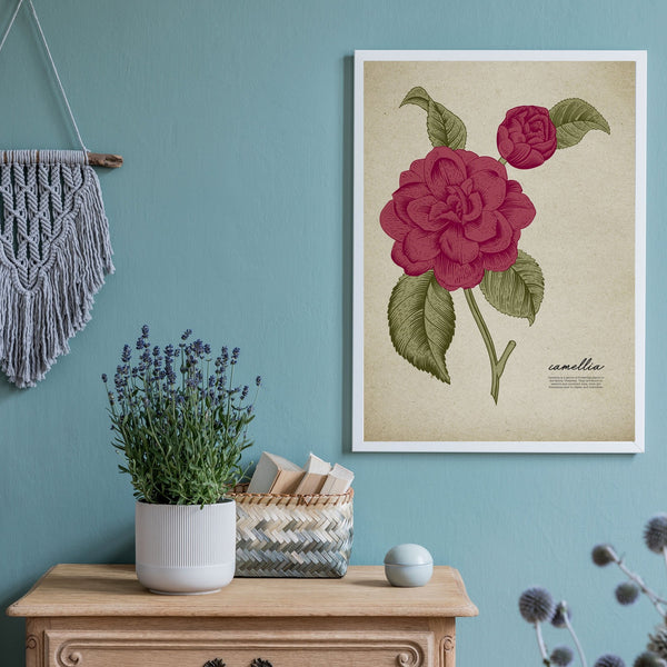 Vintage Botanicals Print Collection