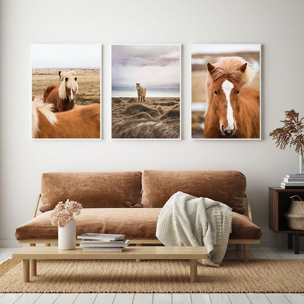 Wild Horse Print Collection