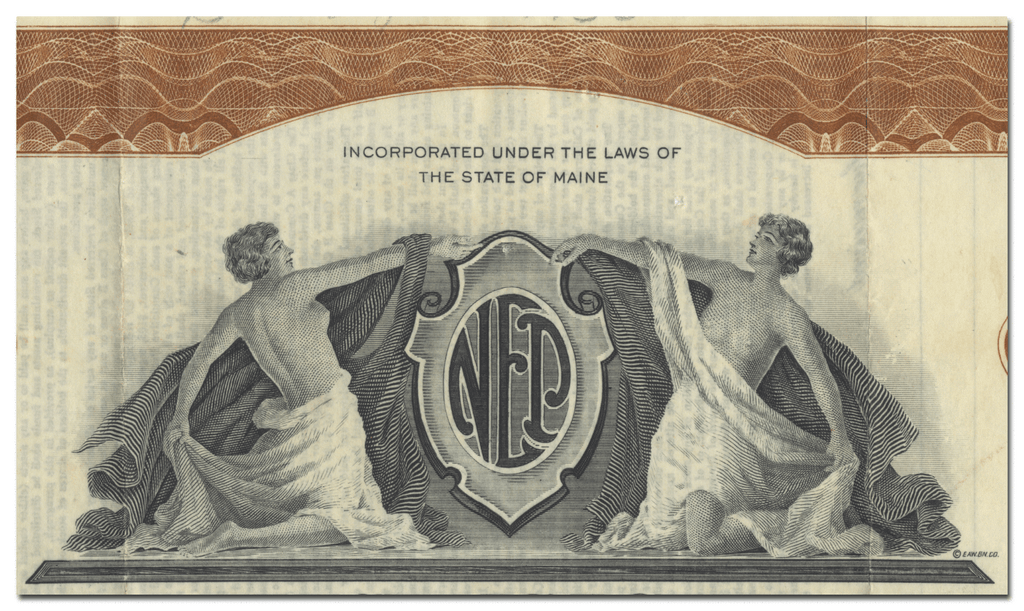 National Electric Power Company Stock Certificate