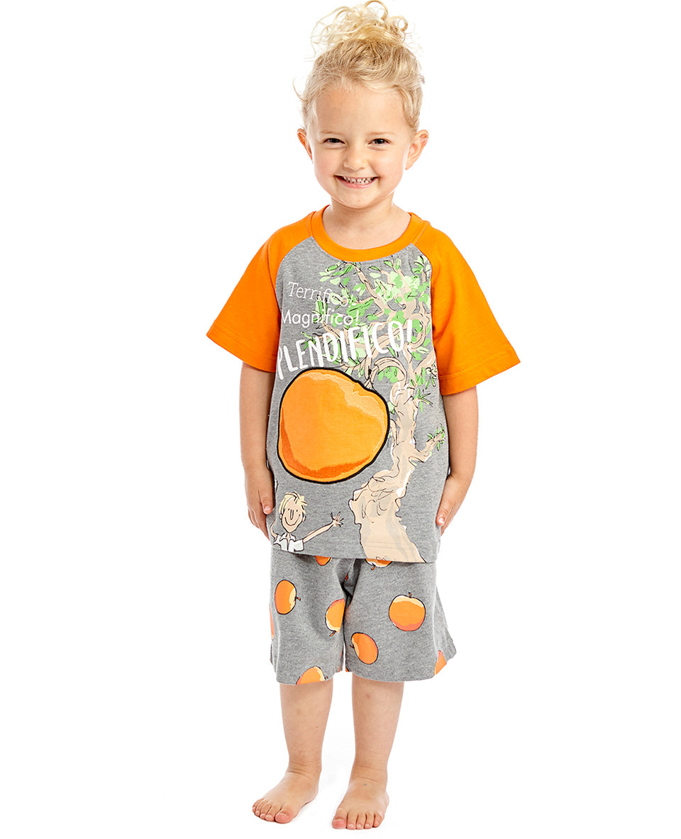 Fabric Flavours James and The Giant Peach T-Shirt