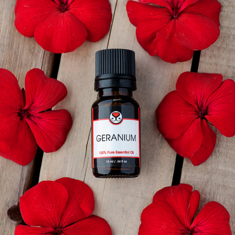 Geranium Pure Essential Oil