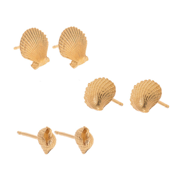 Small Twist Shell Studs