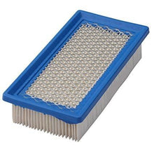 Load image into Gallery viewer, Air Filter Briggs & Stratton OEM 691643
