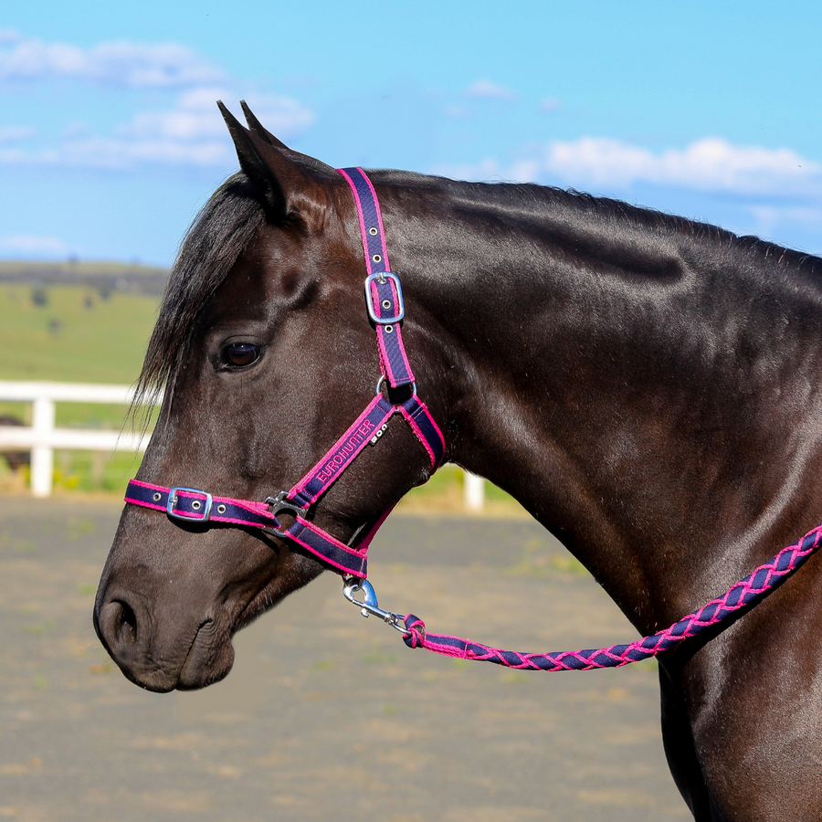 Eurohunter EMB Comfort Halter & Lead Set