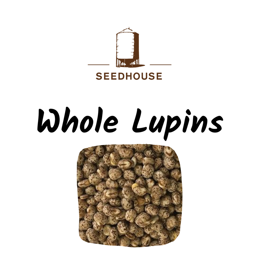 SEEDHOUSE WHOLE LUPINS 20KG