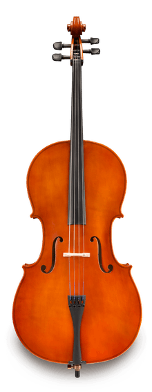 DEMO Samuel Eastman VC80 4/4 Cello