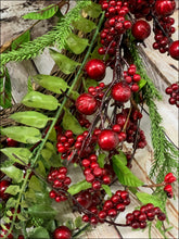 Load image into Gallery viewer, Red Berry Grapevine Wreath - Designer DIY
