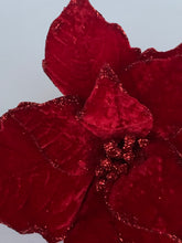 Load image into Gallery viewer, Velvet Poinsettia | Dark Red - Designer DIY