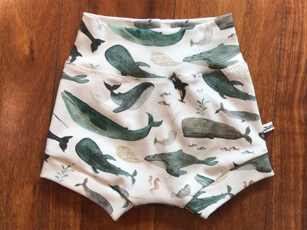 Velzy Shorts - WHALES