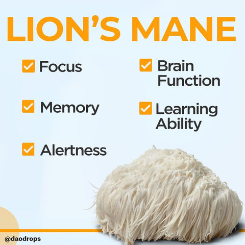 Give your brain a boost with LIONS MANE!