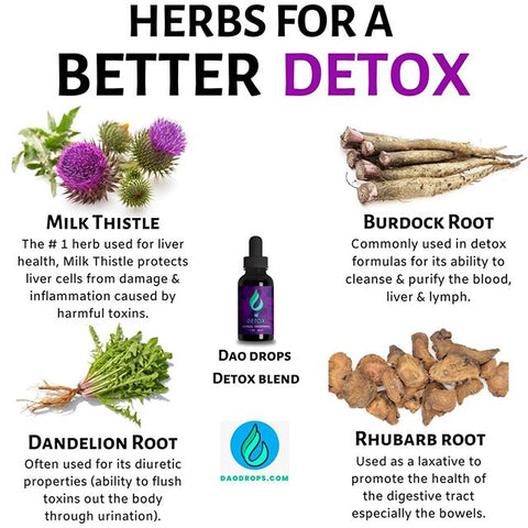 Get These 4 Powerful Detoxifying...